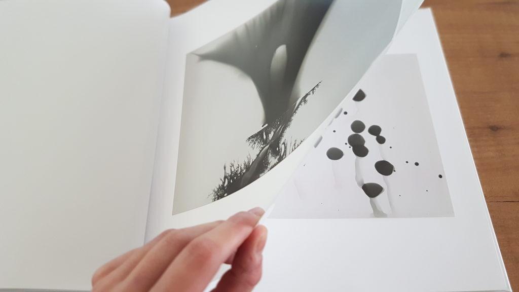 5-iris-janssen-shadowgrams-2016